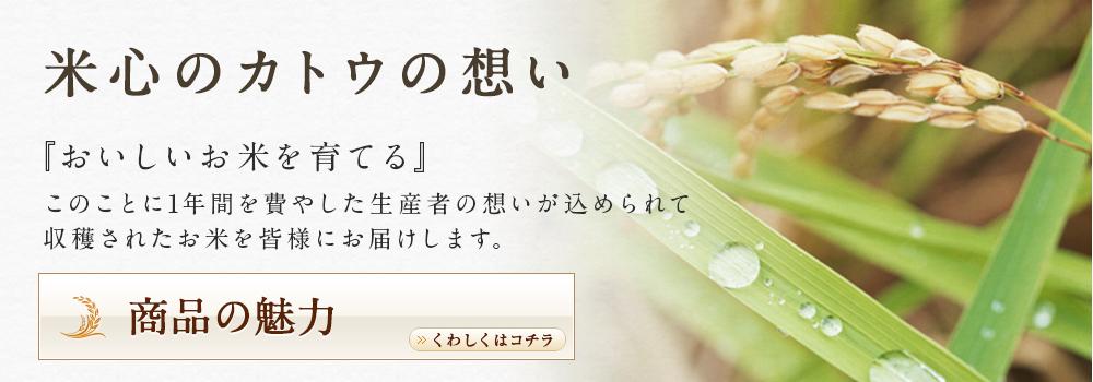 米心のカトウの想い 『おいしいお米を育てる』 このことに1年間を費やした生産者の想いが込められて 収穫されたお米を皆様にお届けします。